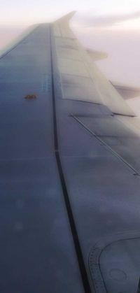 091118_20892-wing